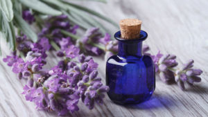 use Lavender oil for acne